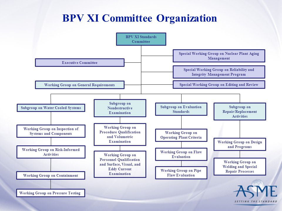 BPV XI Committee Organization BPV XI Standards Committee Working Group on General Requirements Subgroup on Water Cooled Systems Subgroup on Nondestruc