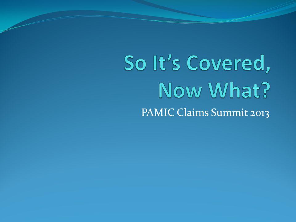 PAMIC Claims Summit 2013