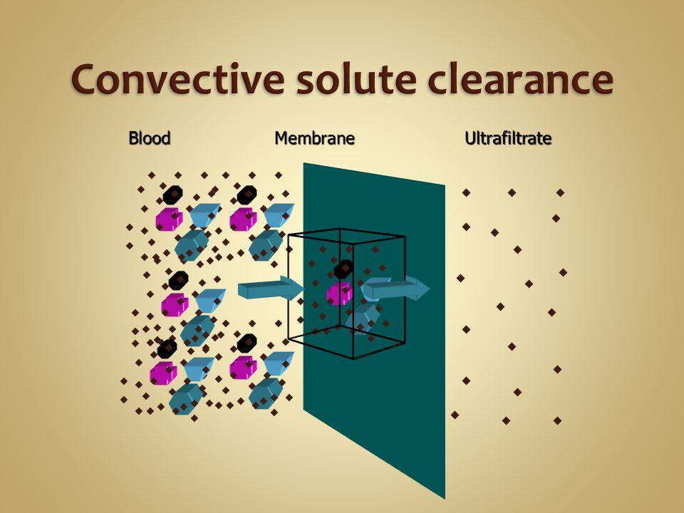 MembraneBlood Ultrafiltrate