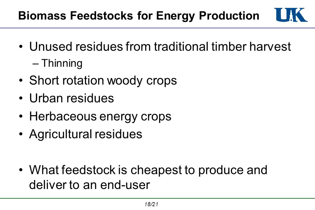 18/21 Biomass Feedstocks for Energy Production Unused residues from traditional timber harvest –Thinning Short rotation woody crops Urban residues Herbaceous energy crops Agricultural residues What feedstock is cheapest to produce and deliver to an end-user