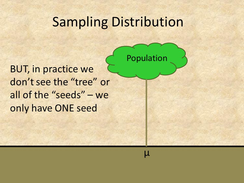 Sampling Distribution Population µ BUT, in practice we dont see the tree or all of the seeds – we only have ONE seed
