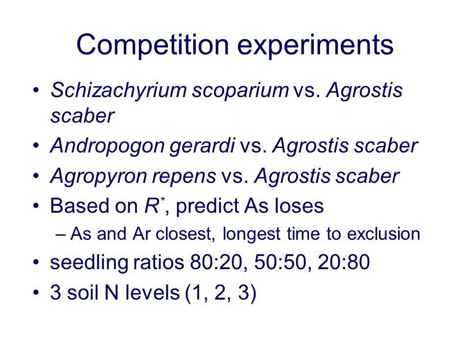 Competition experiments Schizachyrium scoparium vs. Agrostis scaber Andropogon gerardi vs. Agrostis scaber Agropyron repens vs. Agrostis scaber Based
