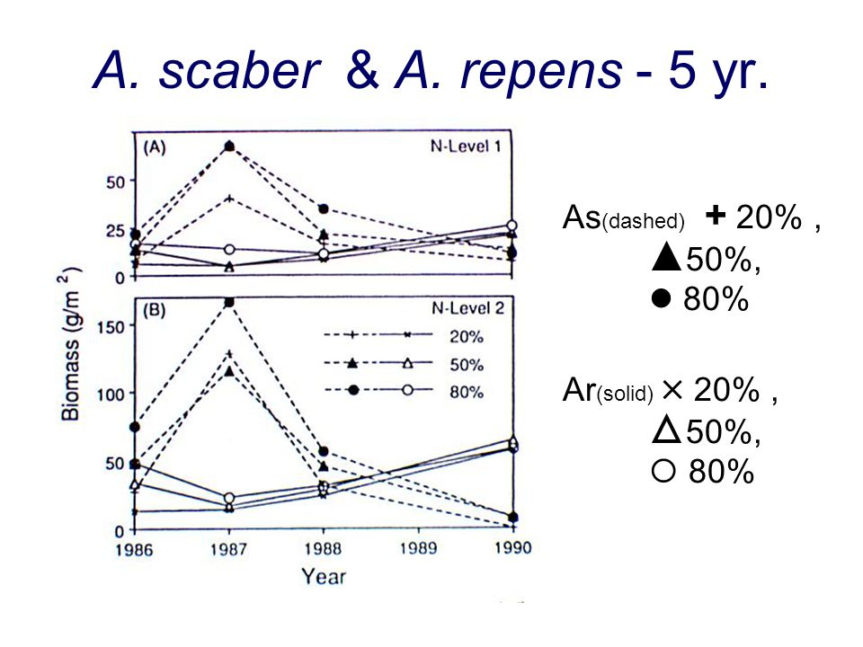 A. scaber & A. repens - 5 yr. As (dashed) + 20%, 50%, 80% Ar (solid) 20%, 50%, 80%