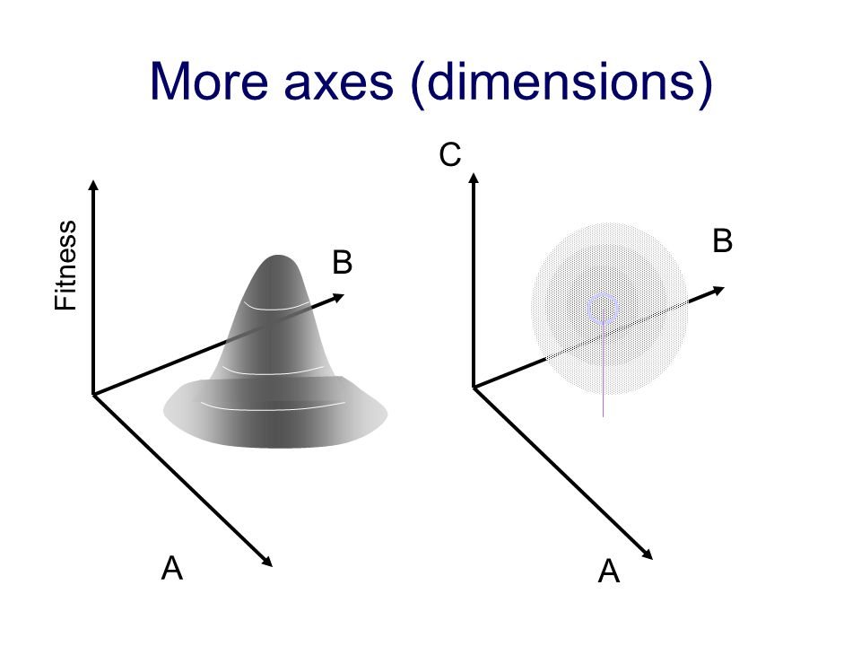 More axes (dimensions) A B A B C Fitness