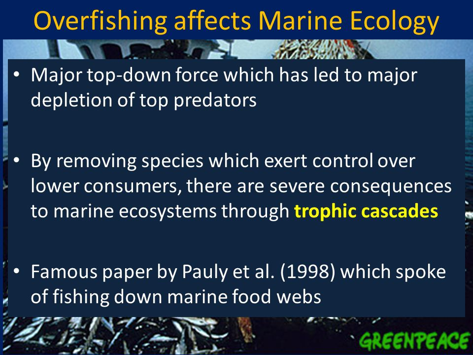 Overfishing affects Marine Ecology Major top-down force which has led to major depletion of top predators By removing species which exert control over