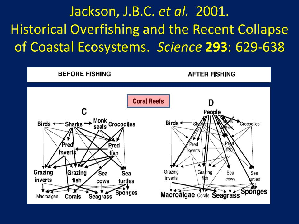 Jackson, J.B.C. et al. 2001. Historical Overfishing and the Recent Collapse of Coastal Ecosystems. Science 293: 629-638