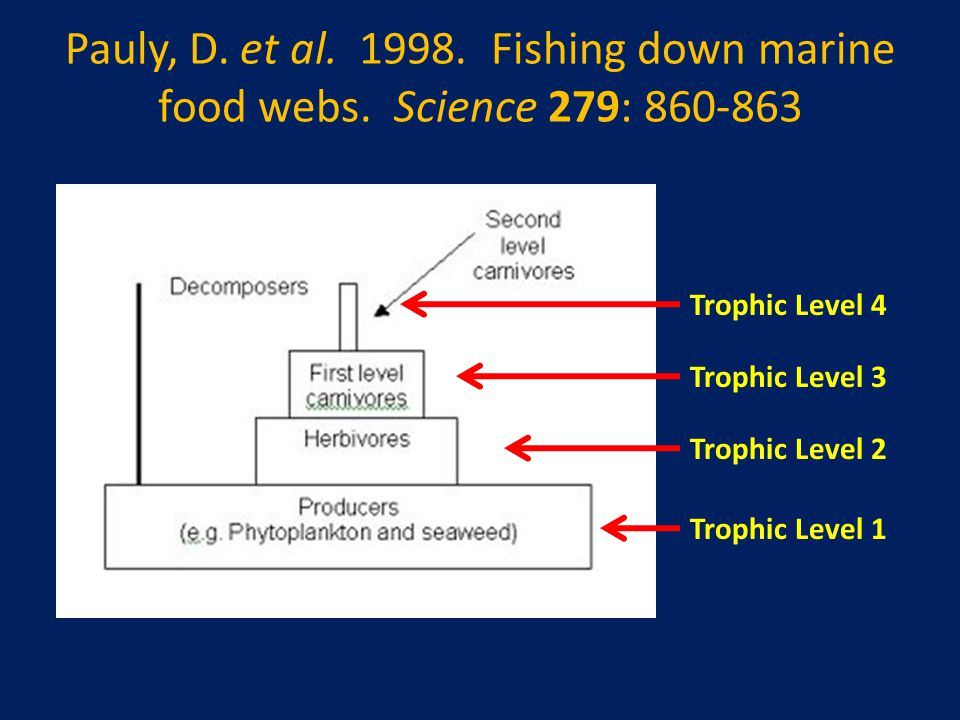 Pauly, D. et al. 1998. Fishing down marine food webs. Science 279: 860-863 Trophic Level 1 Trophic Level 2 Trophic Level 3 Trophic Level 4