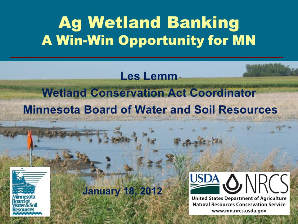 Ag Wetland Banking A Win-Win Opportunity for MN Les Lemm Wetland Conservation Act Coordinator Minnesota Board of Water and Soil Resources January 18,