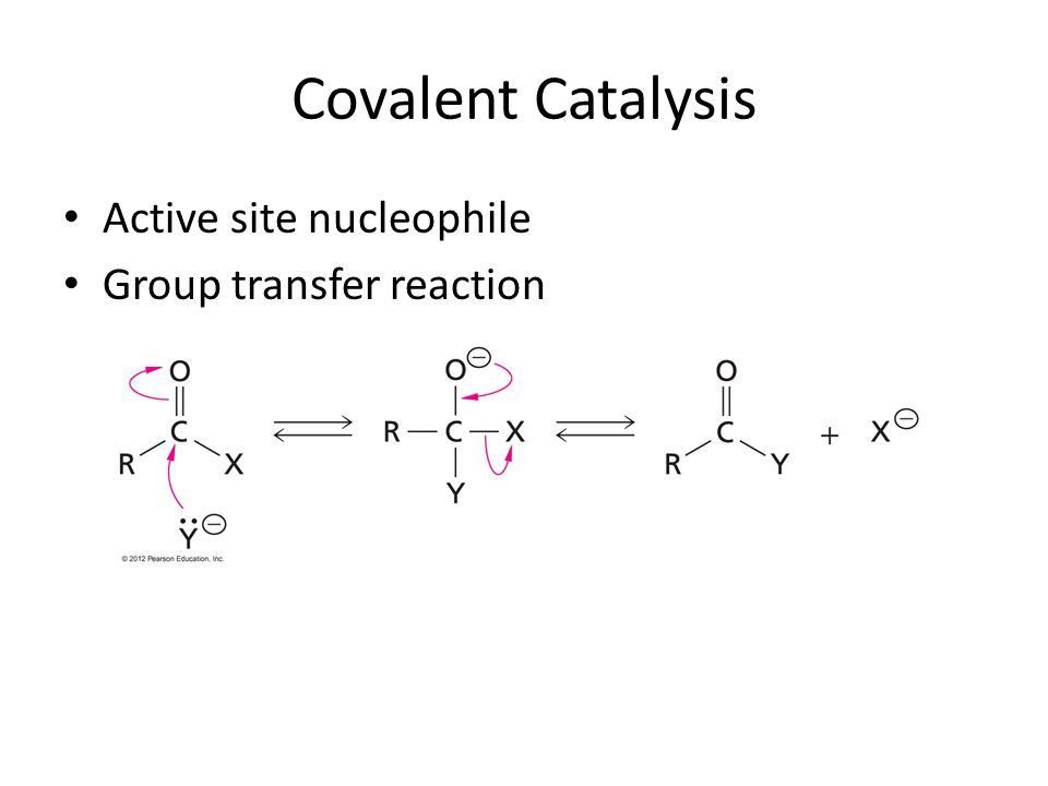 Covalent Catalysis Active site nucleophile Group transfer reaction