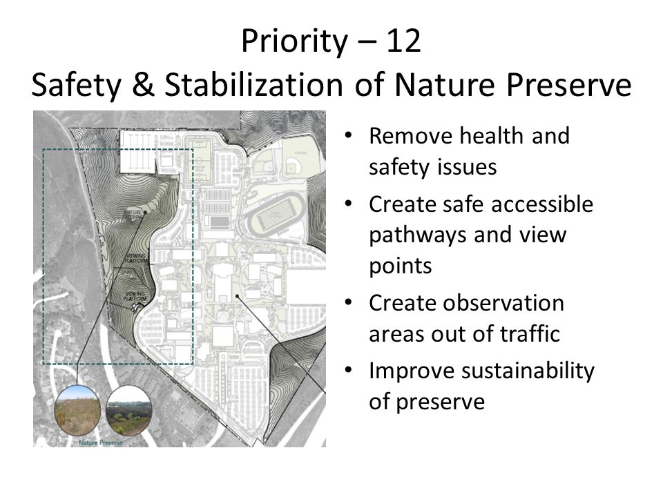 Priority – 12 Safety & Stabilization of Nature Preserve Remove health and safety issues Create safe accessible pathways and view points Create observation areas out of traffic Improve sustainability of preserve