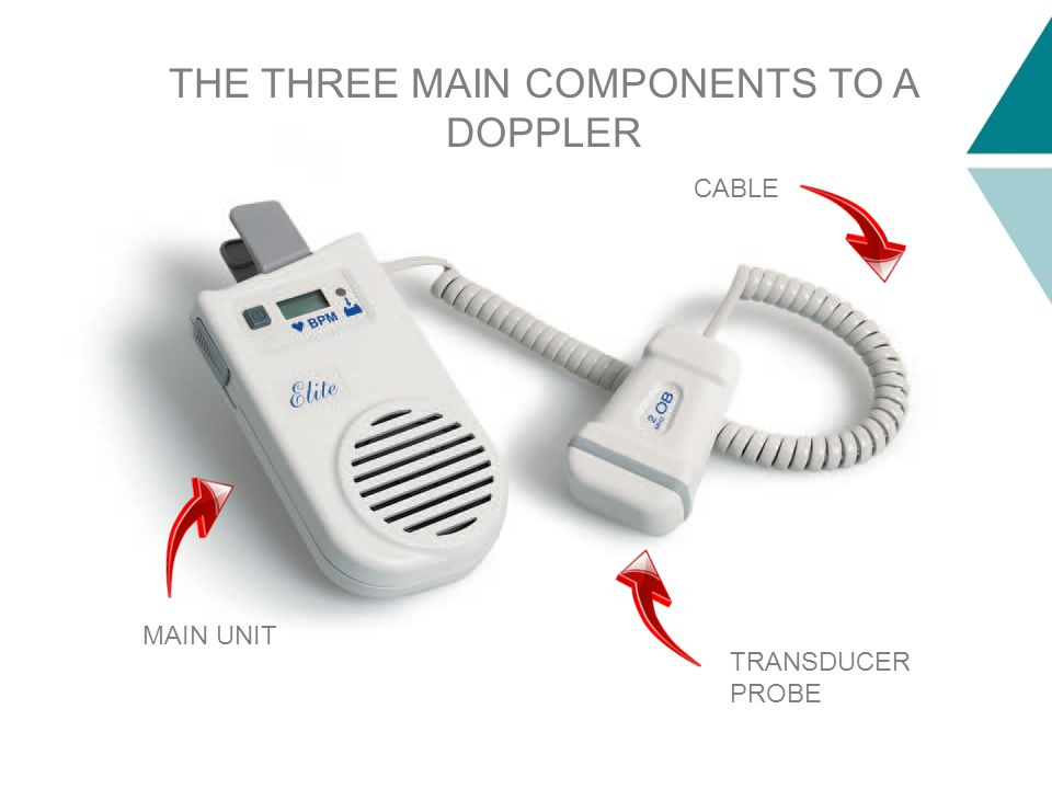 TRANSDUCER PROBE CABLE MAIN UNIT THE THREE MAIN COMPONENTS TO A DOPPLER