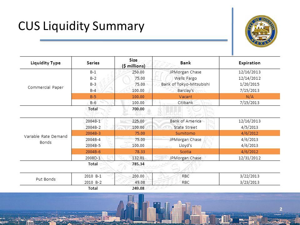 2 CUS Liquidity Summary Liquidity TypeSeries Size ($ millions) BankExpiration Commercial Paper B-1 250.00JPMorgan Chase12/16/2013 B-2 75.00Wells Fargo12/14/2012 B-3 75.00Bank of Tokyo-Mitsubishi1/20/2015 B-4 100.00Barclay s7/15/2013 B-5 100.00VacantN/A B-6 100.00Citibank7/15/2013 Total 700.00 Variable Rate Demand Bonds 2004B-1 225.00Bank of America12/16/2013 2004B-2 100.00State Street4/5/2013 2004B-3 75.00Sumitomo4/6/2012 2004B-4 75.00JPMorgan Chase4/6/2013 2004B-5 100.00Lloyd s4/6/2013 2004B-6 78.33Scotia4/6/2012 2008D-1 132.01JPMorgan Chase12/31/2012 Total 785.34 Put Bonds 2010 B-1 200.00RBC3/22/2013 2010 B-2 49.08RBC3/23/2013 Total 249.08
