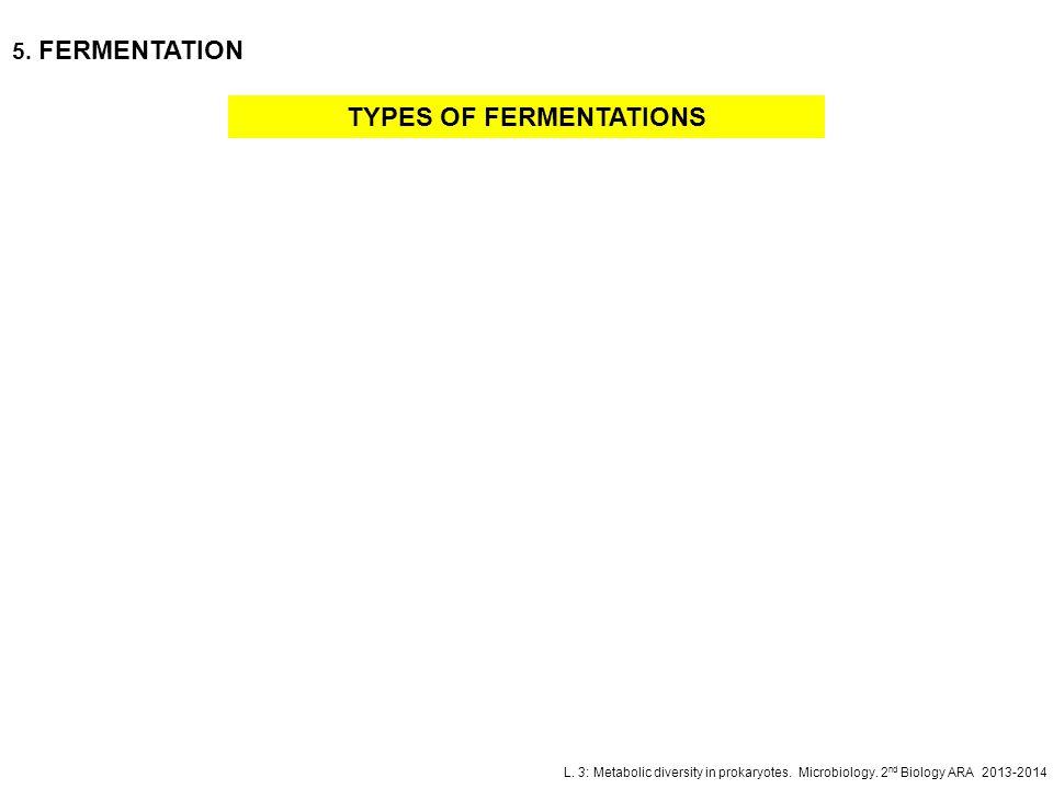 L. 3: Metabolic diversity in prokaryotes. Microbiology. 2 nd Biology ARA 2013-2014 TYPES OF FERMENTATIONS 5. FERMENTATION
