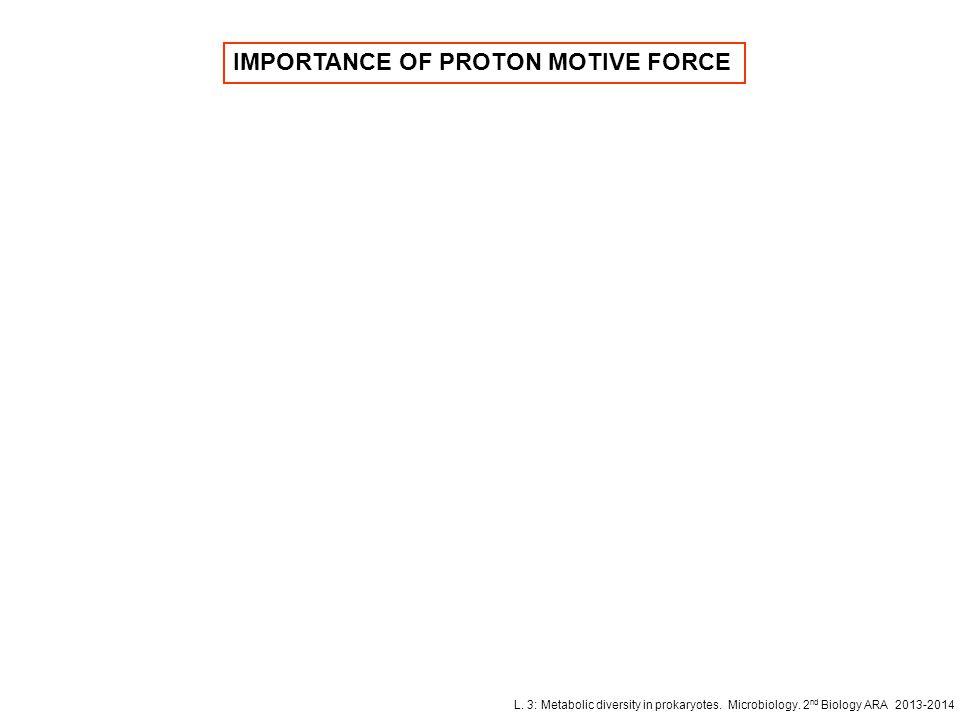 L. 3: Metabolic diversity in prokaryotes. Microbiology. 2 nd Biology ARA 2013-2014 IMPORTANCE OF PROTON MOTIVE FORCE