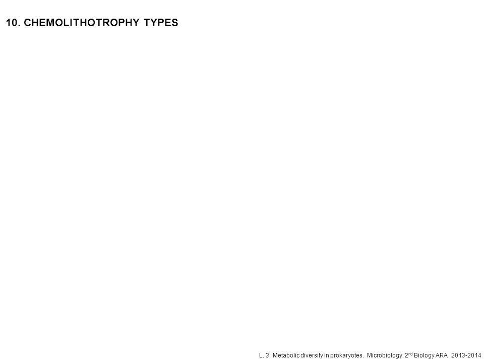 L. 3: Metabolic diversity in prokaryotes. Microbiology. 2 nd Biology ARA 2013-2014 10. CHEMOLITHOTROPHY TYPES
