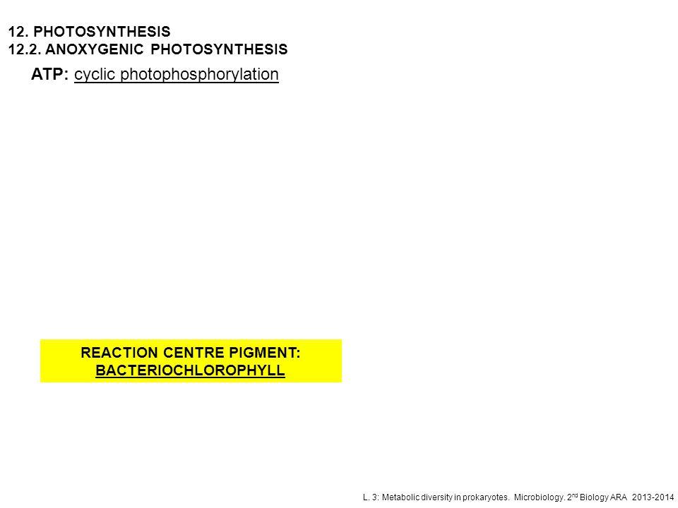 L. 3: Metabolic diversity in prokaryotes. Microbiology. 2 nd Biology ARA 2013-2014 ATP: cyclic photophosphorylation 12. PHOTOSYNTHESIS 12.2. ANOXYGENI