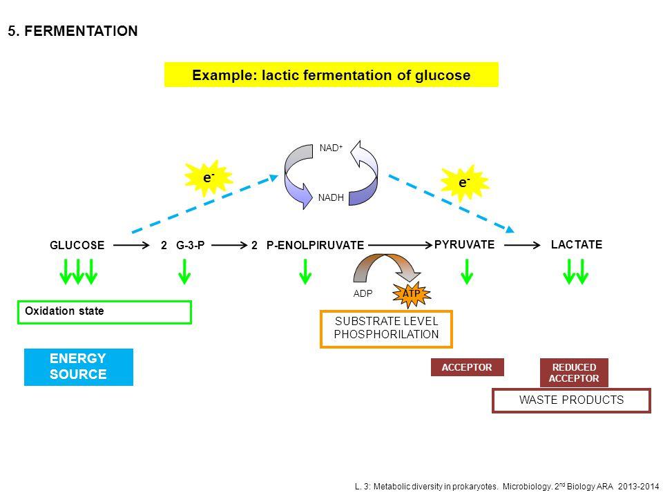 L. 3: Metabolic diversity in prokaryotes. Microbiology. 2 nd Biology ARA 2013-2014 5. FERMENTATION Example: lactic fermentation of glucose GLUCOSE2 G-