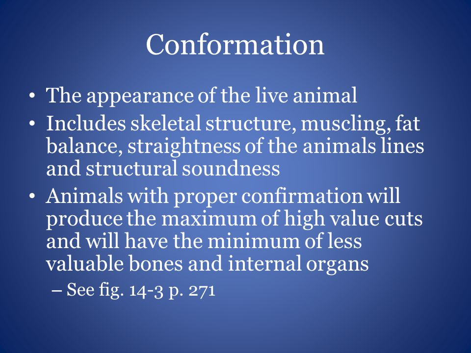 Conformation The appearance of the live animal Includes skeletal structure, muscling, fat balance, straightness of the animals lines and structural so