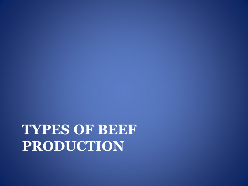 TYPES OF BEEF PRODUCTION