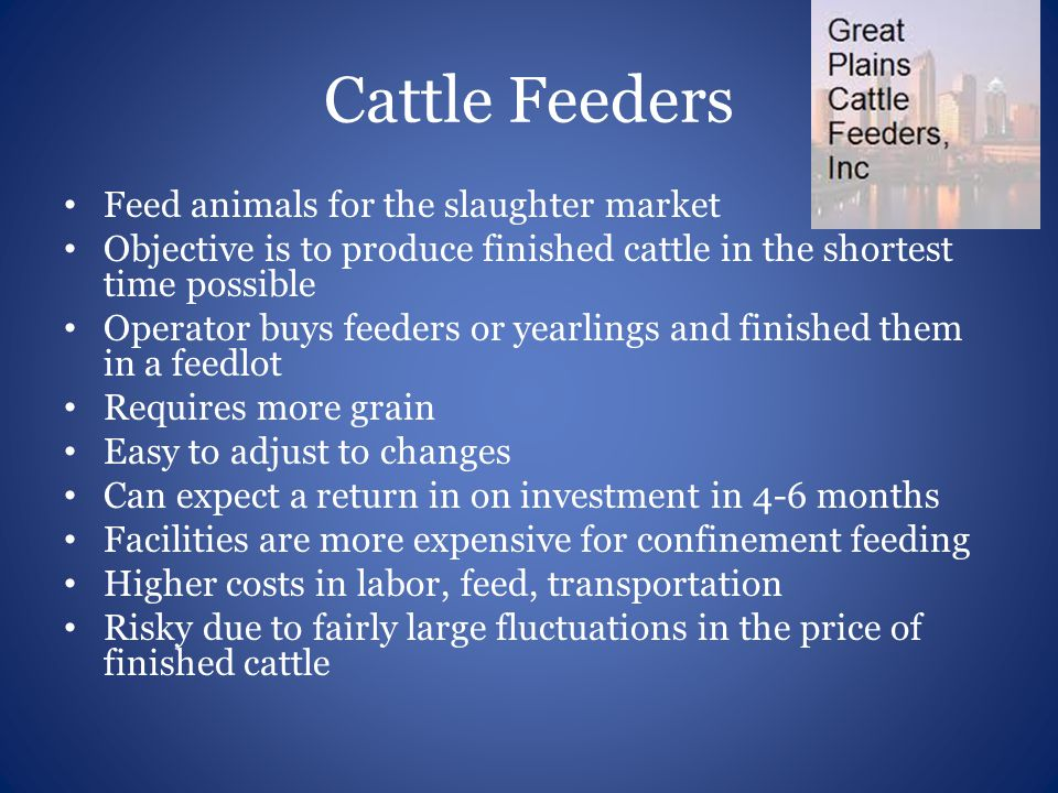 Cattle Feeders Feed animals for the slaughter market Objective is to produce finished cattle in the shortest time possible Operator buys feeders or ye