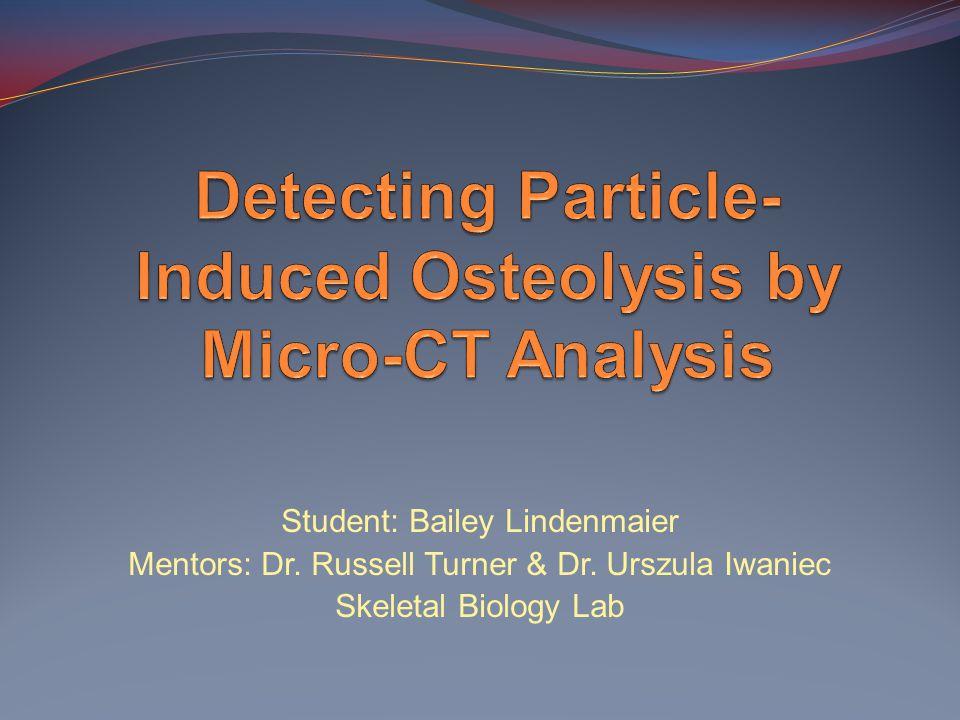Student: Bailey Lindenmaier Mentors: Dr. Russell Turner & Dr. Urszula Iwaniec Skeletal Biology Lab