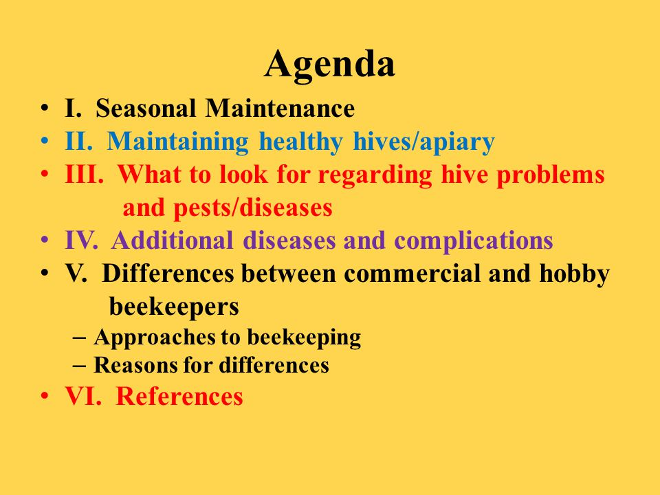 Agenda I. Seasonal Maintenance II. Maintaining healthy hives/apiary III. What to look for regarding hive problems and pests/diseases IV. Additional di