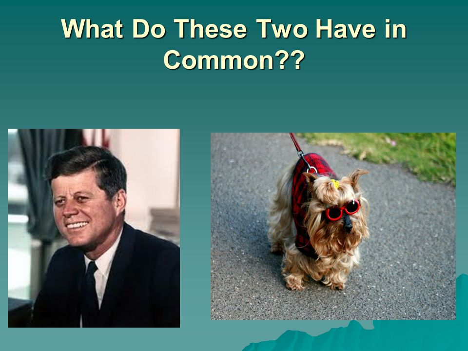 What Do These Two Have in Common??