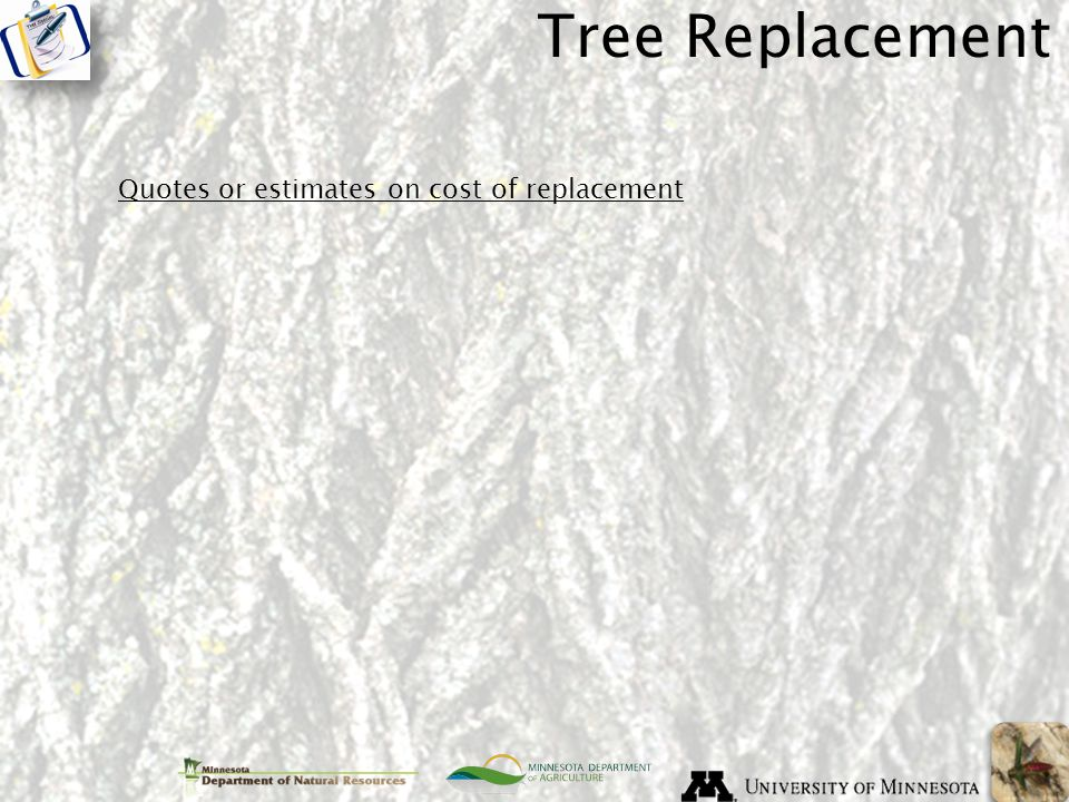 Tree Replacement Quotes or estimates on cost of replacement