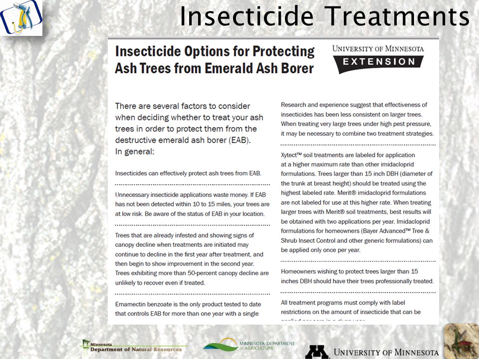 Insecticide Treatments