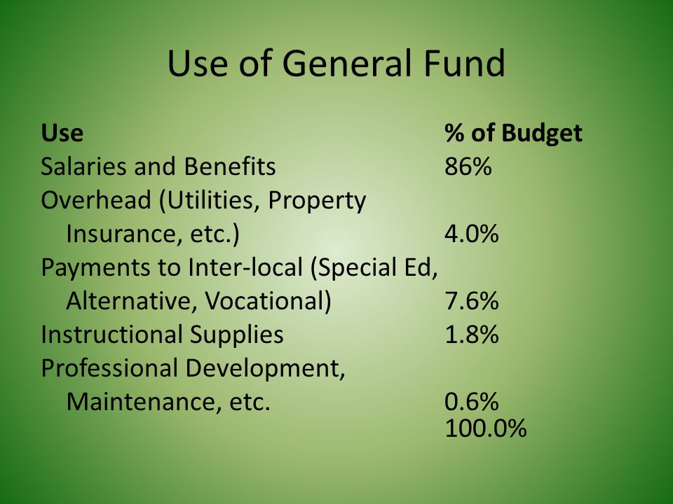 Use of Debt Service Fund Use % of Budget Lease Rental Payments and Interest 99.6% Temporary Loan Interest 0.4% 100.0%