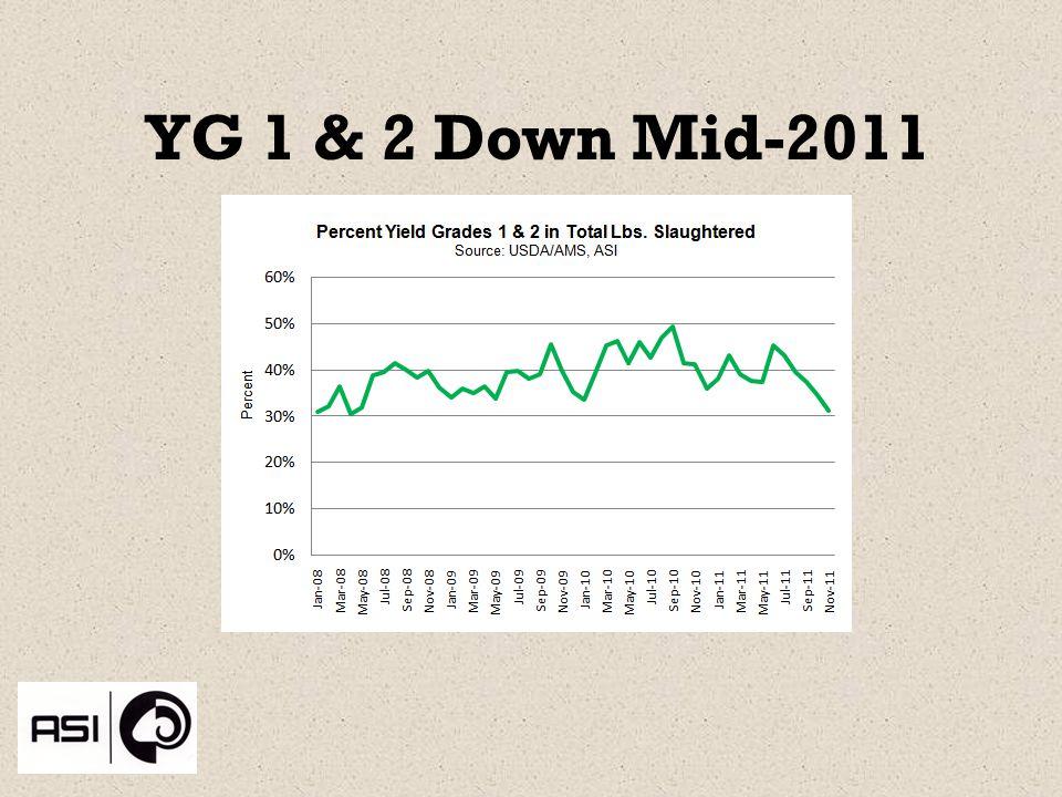 YG 1 & 2 Down Mid-2011