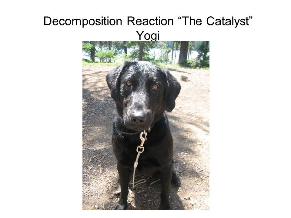 Decomposition Reaction The Catalyst Yogi