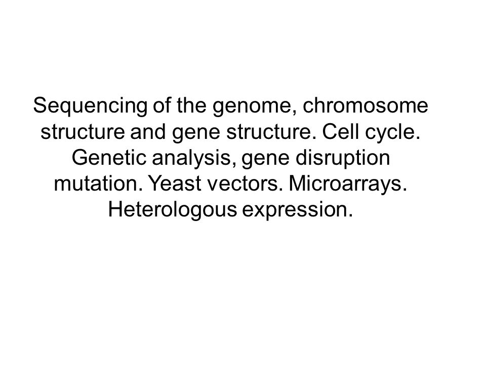 Sequencing of the genome, chromosome structure and gene structure.