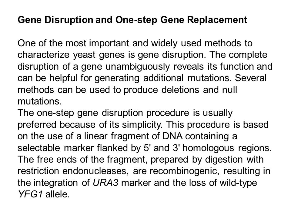 Gene Disruption and One-step Gene Replacement One of the most important and widely used methods to characterize yeast genes is gene disruption.