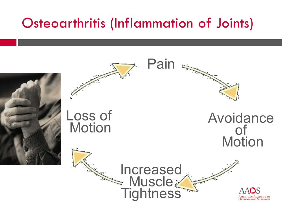 12 Pain Avoidance of Motion Increased Muscle Tightness Loss of Motion Osteoarthritis (Inflammation of Joints)