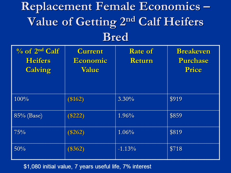 Replacement Female Economics – Value of Getting 2 nd Calf Heifers Bred % of 2 nd Calf Heifers Calving Current Economic Value Rate of Return Breakeven Purchase Price 100%($162)3.30%$919 85% (Base) ($222)1.96%$859 75%($262)1.06%$819 50%($362)-1.13%$718 $1,080 initial value, 7 years useful life, 7% interest