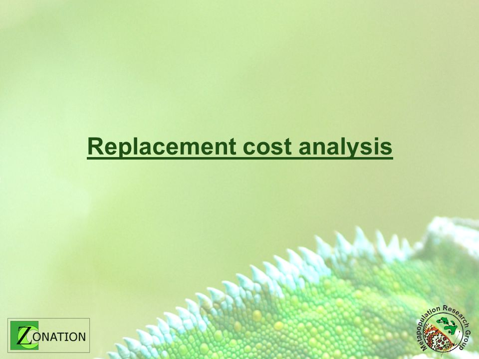Replacement cost analysis