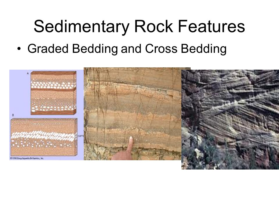 SEDIMENTARY ROCKS CLASSIFIED AS CLASTIC OR NONCLASTIC.