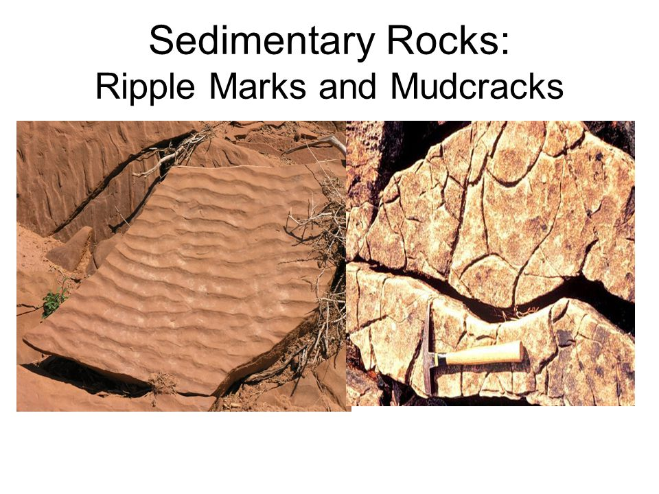 Sedimentary Rock Features Graded Bedding and Cross Bedding