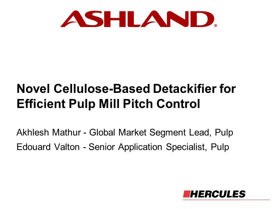 Akhlesh Mathur - Global Market Segment Lead, Pulp Edouard Valton - Senior Application Specialist, Pulp Novel Cellulose-Based Detackifier for Efficient