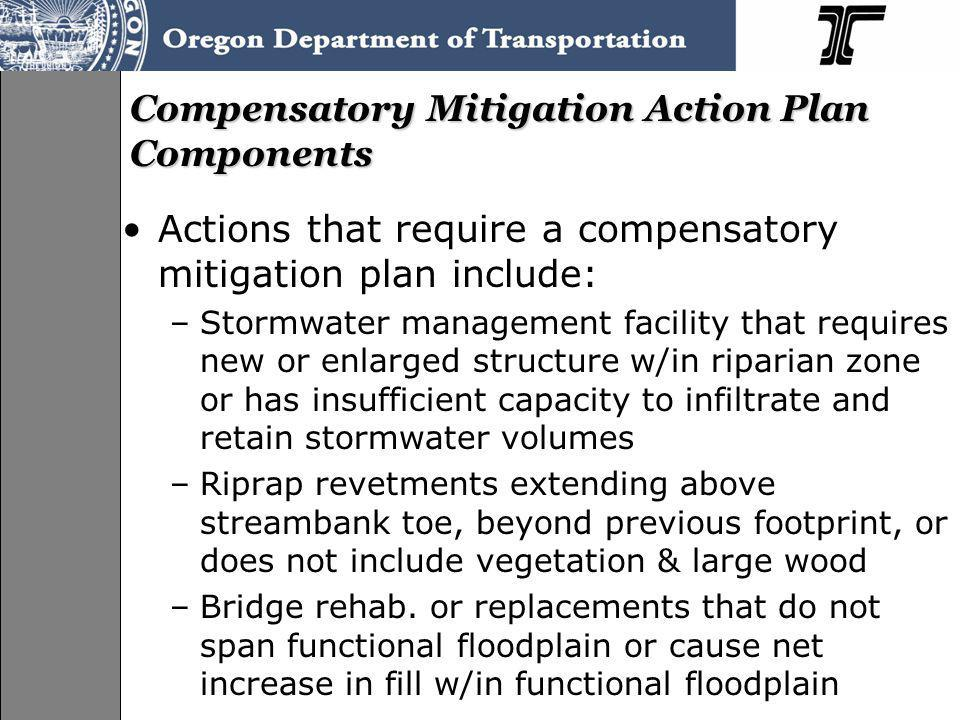 Compensatory Mitigation Action Plan Components Actions that require a compensatory mitigation plan include: –Stormwater management facility that requi
