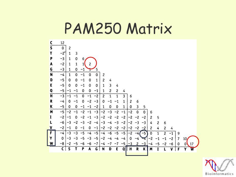 PAM250 Matrix
