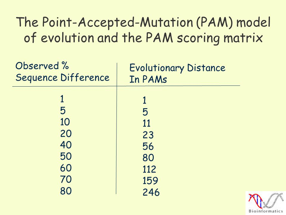 The Point-Accepted-Mutation (PAM) model of evolution and the PAM scoring matrix Observed % Sequence Difference Evolutionary Distance In PAMs 1 5 10 20 40 50 60 70 80 1 5 11 23 56 80 112 159 246