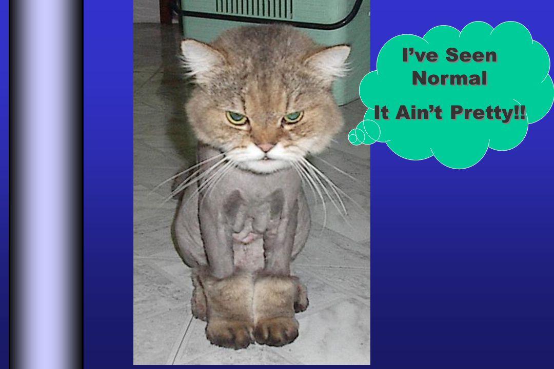 Ive Seen Normal It Aint Pretty!! Ive Seen Normal It Aint Pretty!!