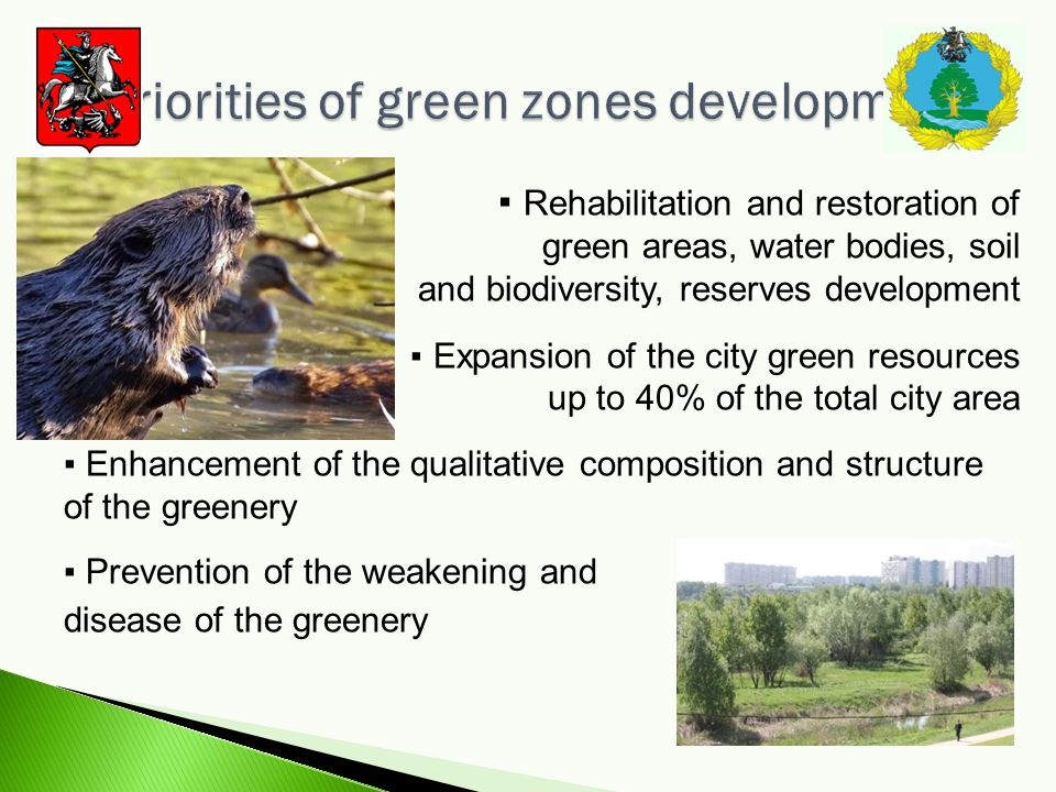 Rehabilitation and restoration of green areas, water bodies, soil and biodiversity, reserves development Expansion of the city green resources up to 40% of the total city area Enhancement of the qualitative composition and structure of the greenery Prevention of the weakening and disease of the greenery