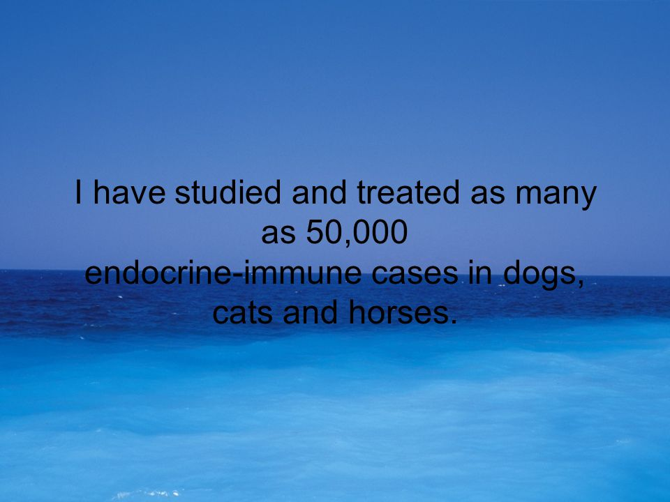 I have studied and treated as many as 50,000 endocrine-immune cases in dogs, cats and horses.