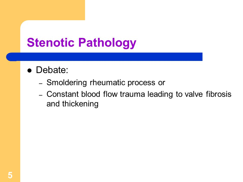5 Stenotic Pathology Debate: – Smoldering rheumatic process or – Constant blood flow trauma leading to valve fibrosis and thickening