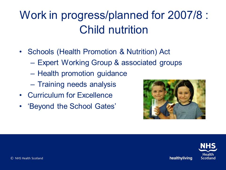 Work in progress/planned for 2007/8 : Child nutrition Schools (Health Promotion & Nutrition) Act –Expert Working Group & associated groups –Health pro