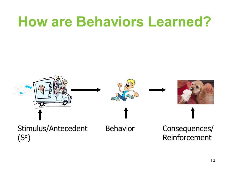 How are Behaviors Learned? Stimulus/Antecedent (S d ) BehaviorConsequences/ Reinforcement 13