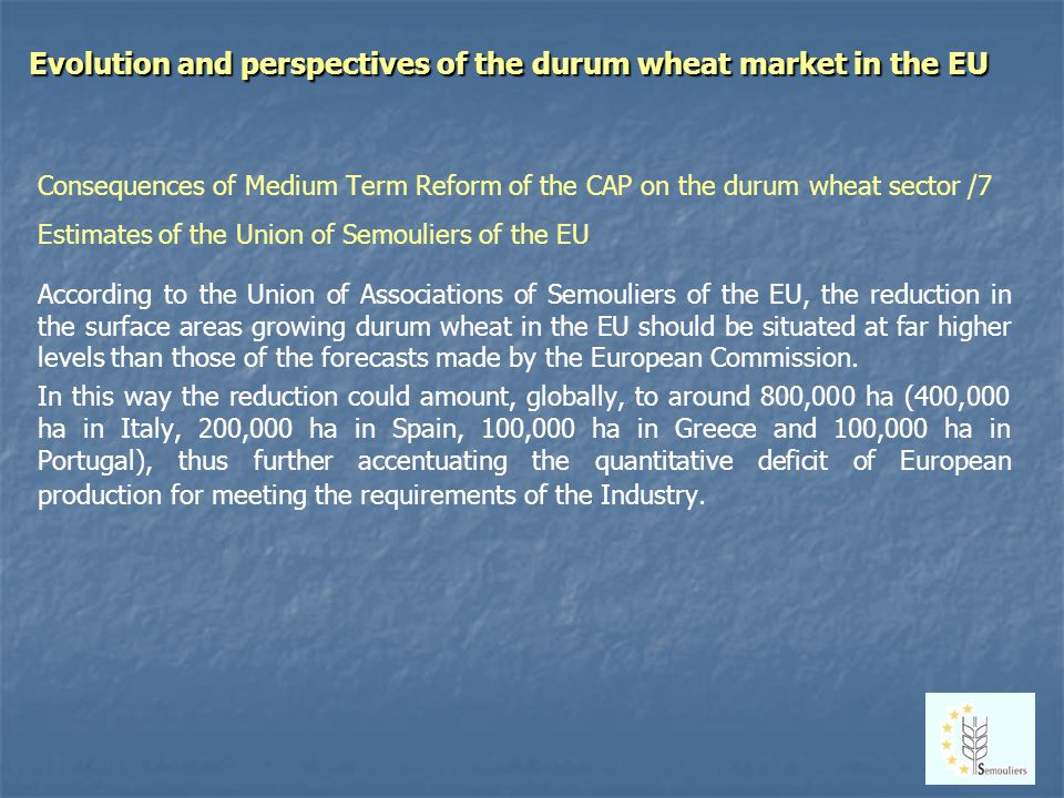 Evolution and perspectives of the durum wheat market in the EU Consequences of Medium Term Reform of the CAP on the durum wheat sector /7 Estimates of the Union of Semouliers of the EU According to the Union of Associations of Semouliers of the EU, the reduction in the surface areas growing durum wheat in the EU should be situated at far higher levels than those of the forecasts made by the European Commission.